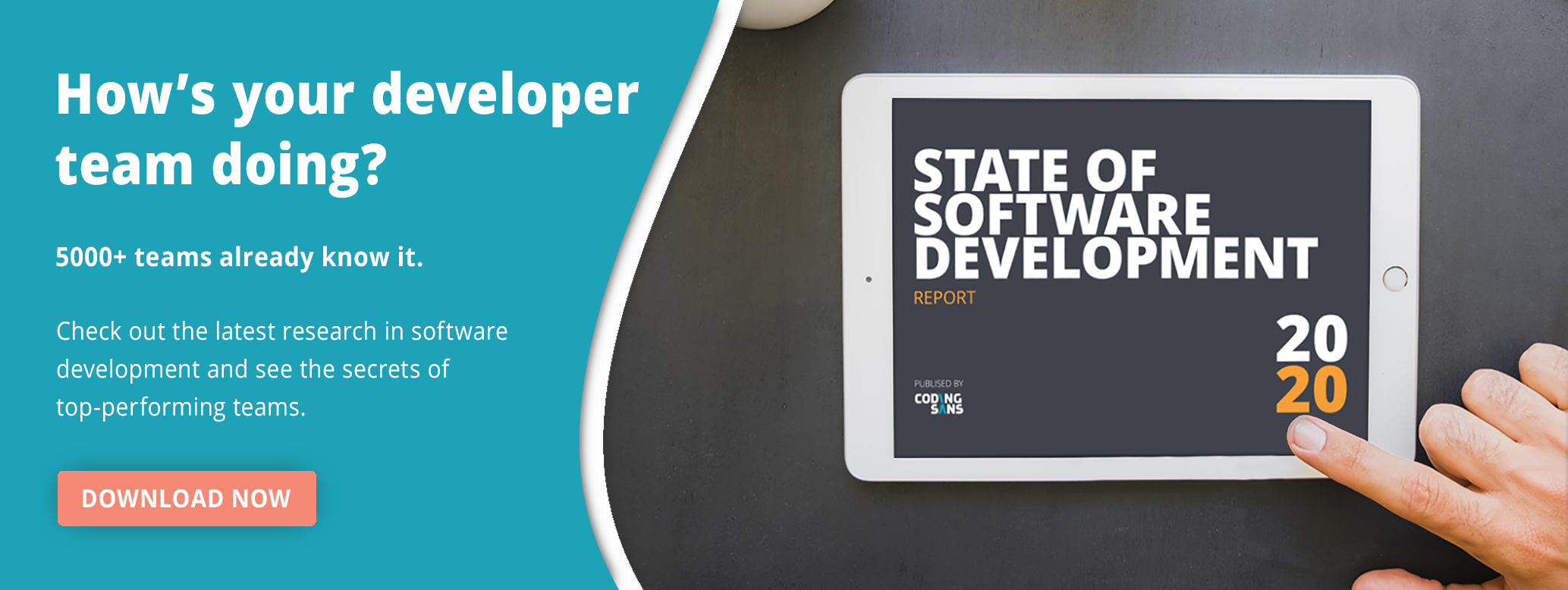 Software Development Trends Report